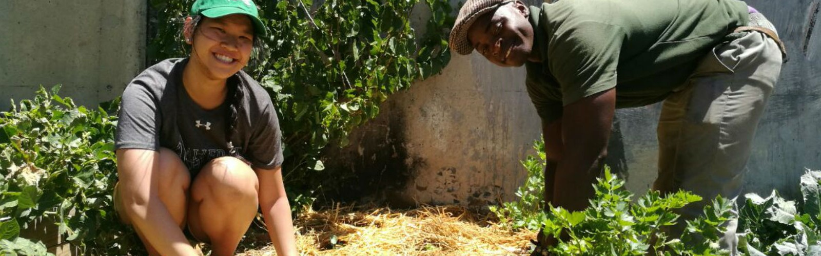 A Day with Vera, Food Security and Urban Farming Intern