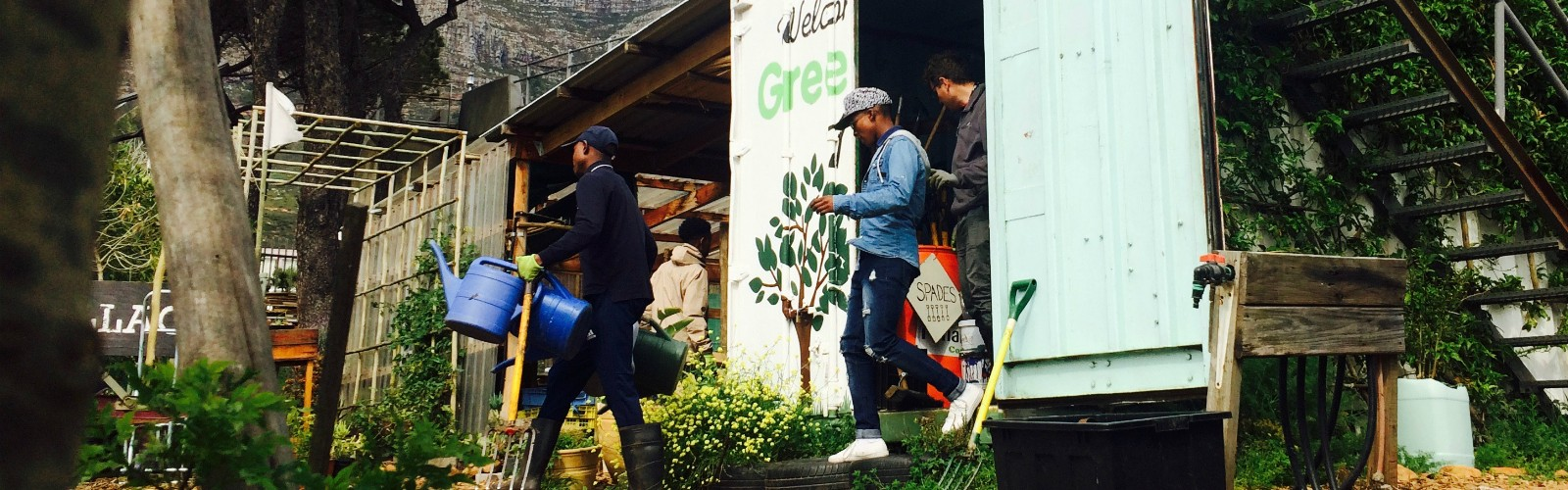 Growing the Eco Education Hub during your Urban Farming Internship with Greenpop
