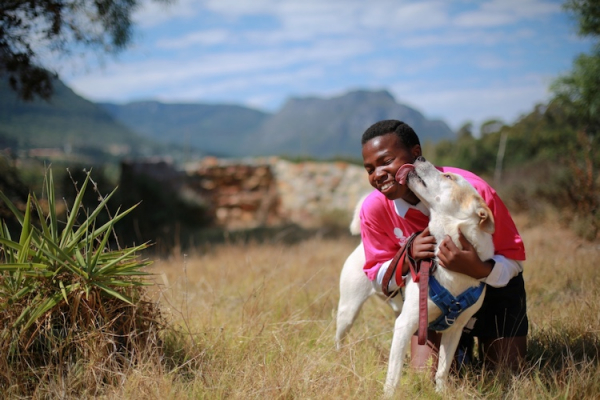 dog charity internship Cape Town